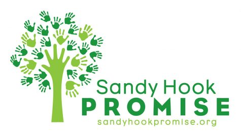 Sandy Hook Promise's video goes viral