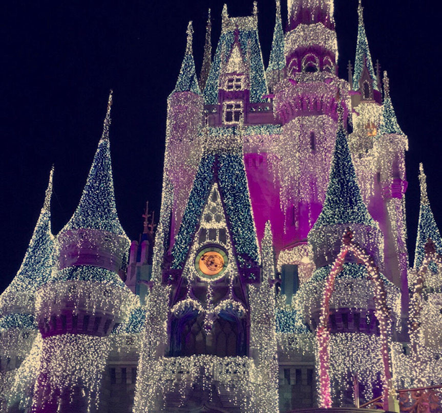 Disney+puts+on+their+annual+holiday+light+display.