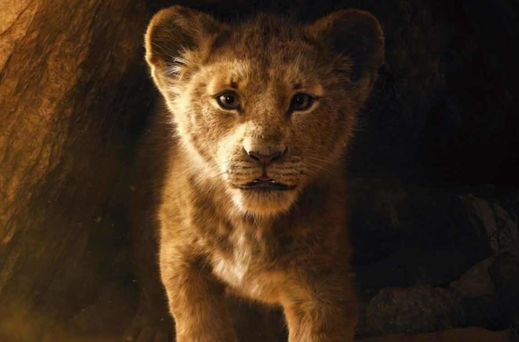 Official promotional poster of Simba from live action