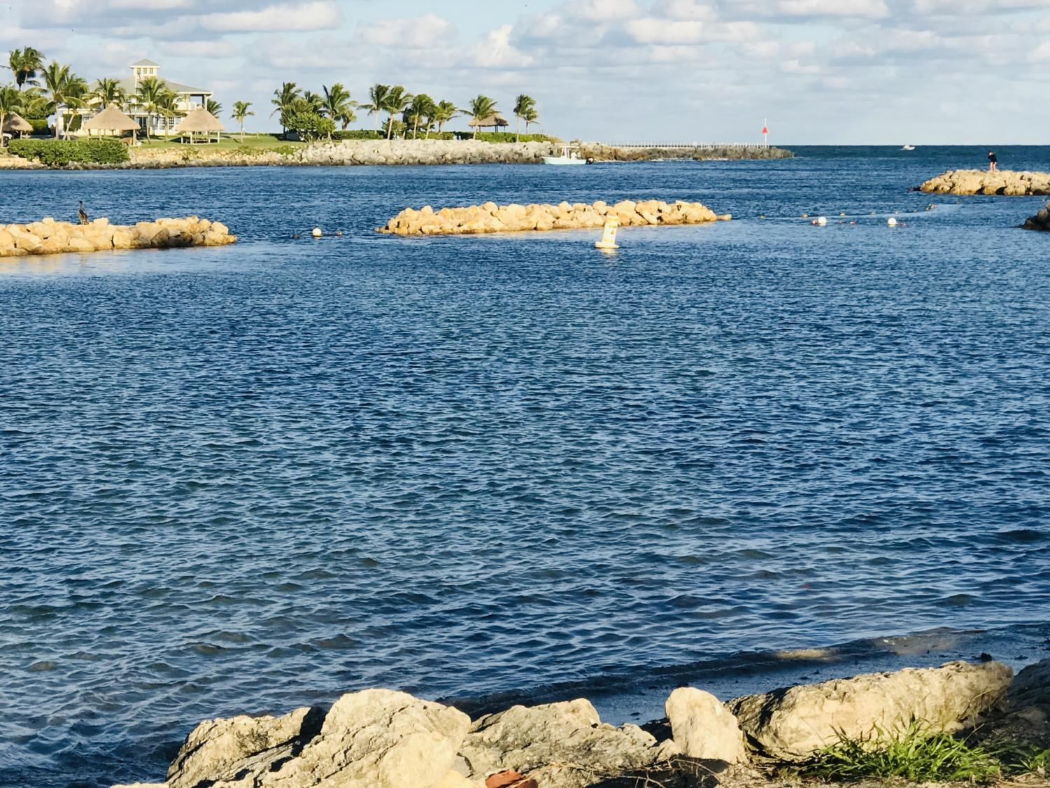 Dubois Park along the Jupiter Inlet is a fun and relaxing place to visit over Spring Break.