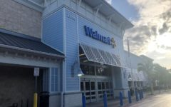 Walmart cuts back on sales of guns and ammunition