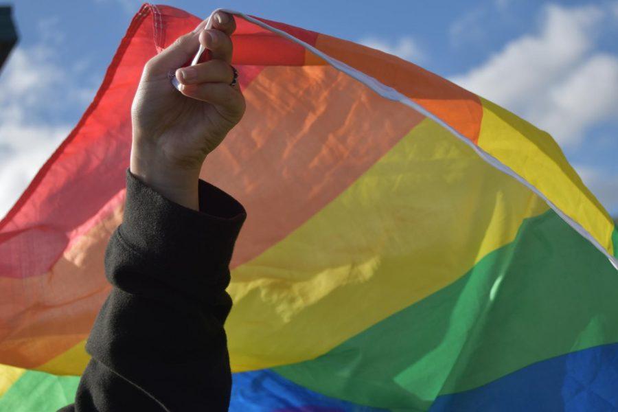 Delilah+waving+a+pride+flag.