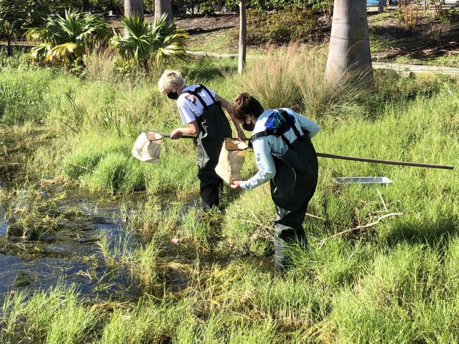 JERFSA students gather specimens for their environmental research projects.